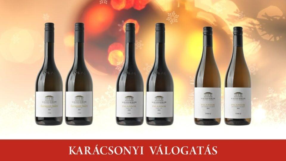 karadi-berger-karacsony-2018-C (2)